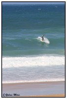 surf2016-62