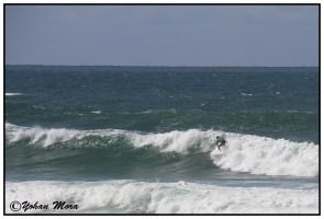 surf2016-70