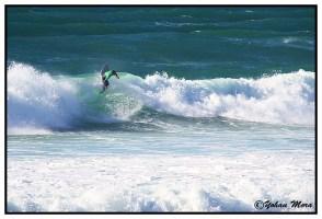 surf2016-91
