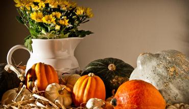 thanksgiving-still-life-onyonet-photo-studios