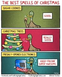SMELLS OF CHRISTMAS