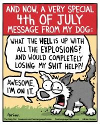 4th of july dog