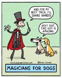 magicians-for-dogs