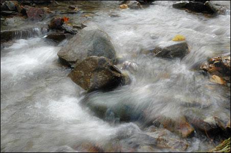 creekflow1.jpg