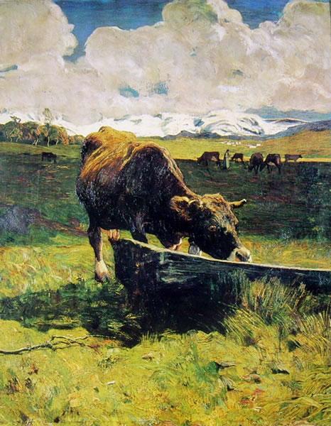 Vacca bruna all'abbeveratoio