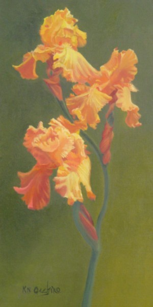 Apricots (Bearded Iris)