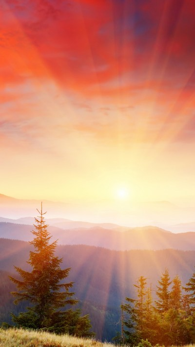 Bright Sunshine Wallpaper - Free iPhone Wallpapers