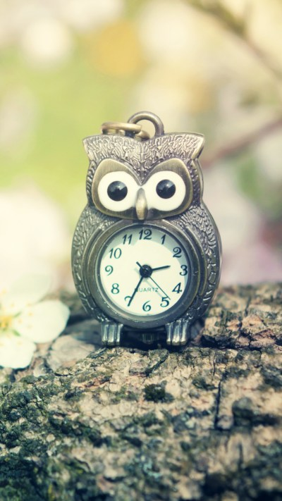 Owl Clock Wallpaper - Free iPhone Wallpapers