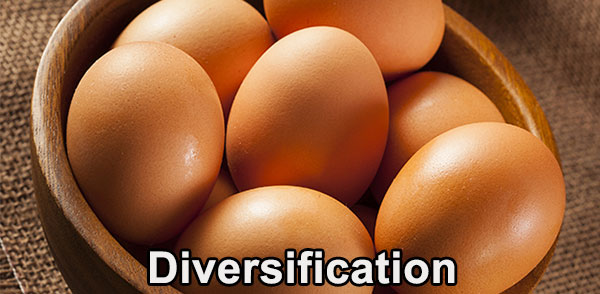 16-07-diversification