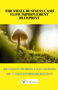THE SMALL BUSINESS CASH FLOW IMPROVEMENT BLUEPRINT