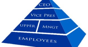 Startups to embrace hierarchical structure