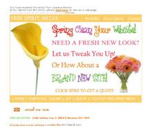 Free Spirit Media- WEb DEsign & Marketing Specialists