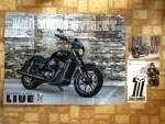Harley-Davidson Sticker - Black Out Custom Bike Poster - and card from Harley-Davidson Motor Company