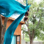 Moseley_backyard silk