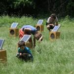 Kevin Colarusso, Sun boxes, Laguna Gloria