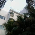Shore Club hotel (along Collins Avenue)