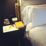 Sarah Hobbs, Overpacked, W Hotel, Atlanta, Dec 2012