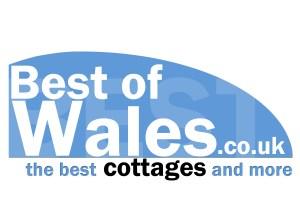 logo_best_of_wales