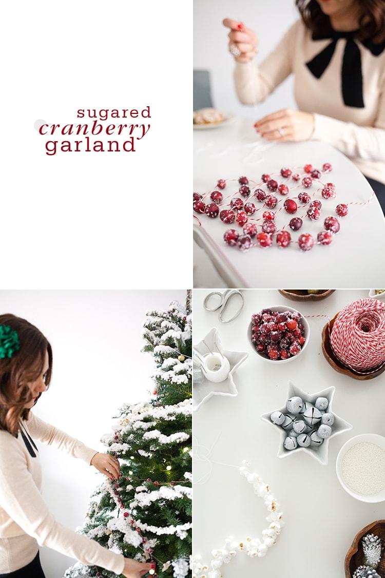 Sugared-Cranberry-Garland
