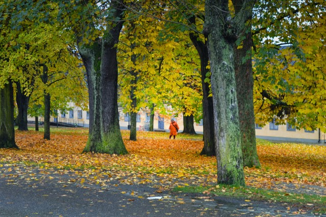 Woman amongst autumn trees