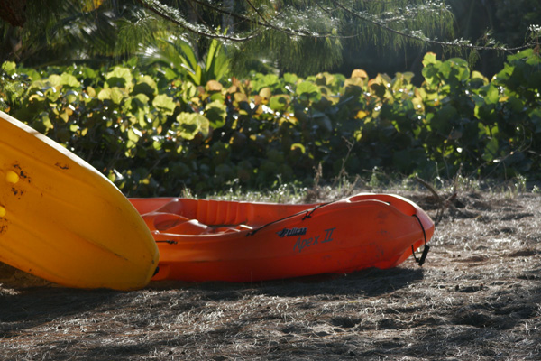 body_kayak