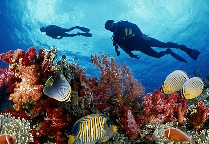 Underwater Burial