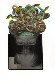 Medusa © Mattew Cox