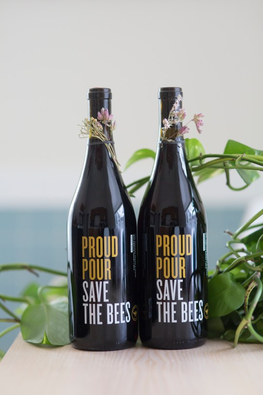 ProudPour Pinot redesigned bottle (red wine)