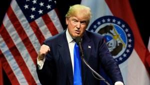 Trump-punching