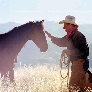 horse-whisper
