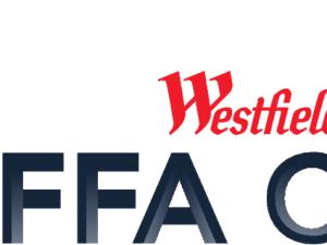 FFA Cup 2015