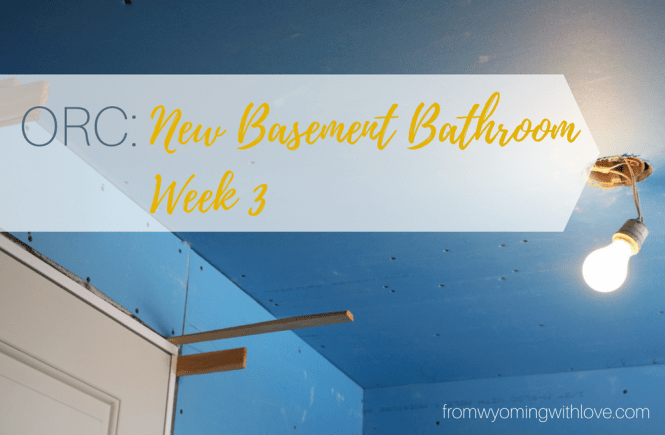 orc-new-basement-bathroom-week-3