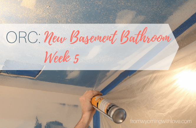 orc-new-basement-bathroom-week-5