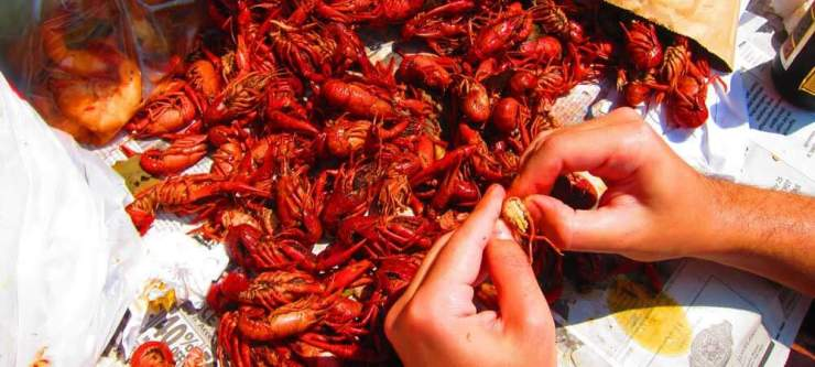 5 Awesome Times During the Year to Visit New Orleans