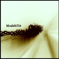 mudskills (200 x 200)