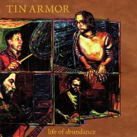 tin armor (200 x 200)