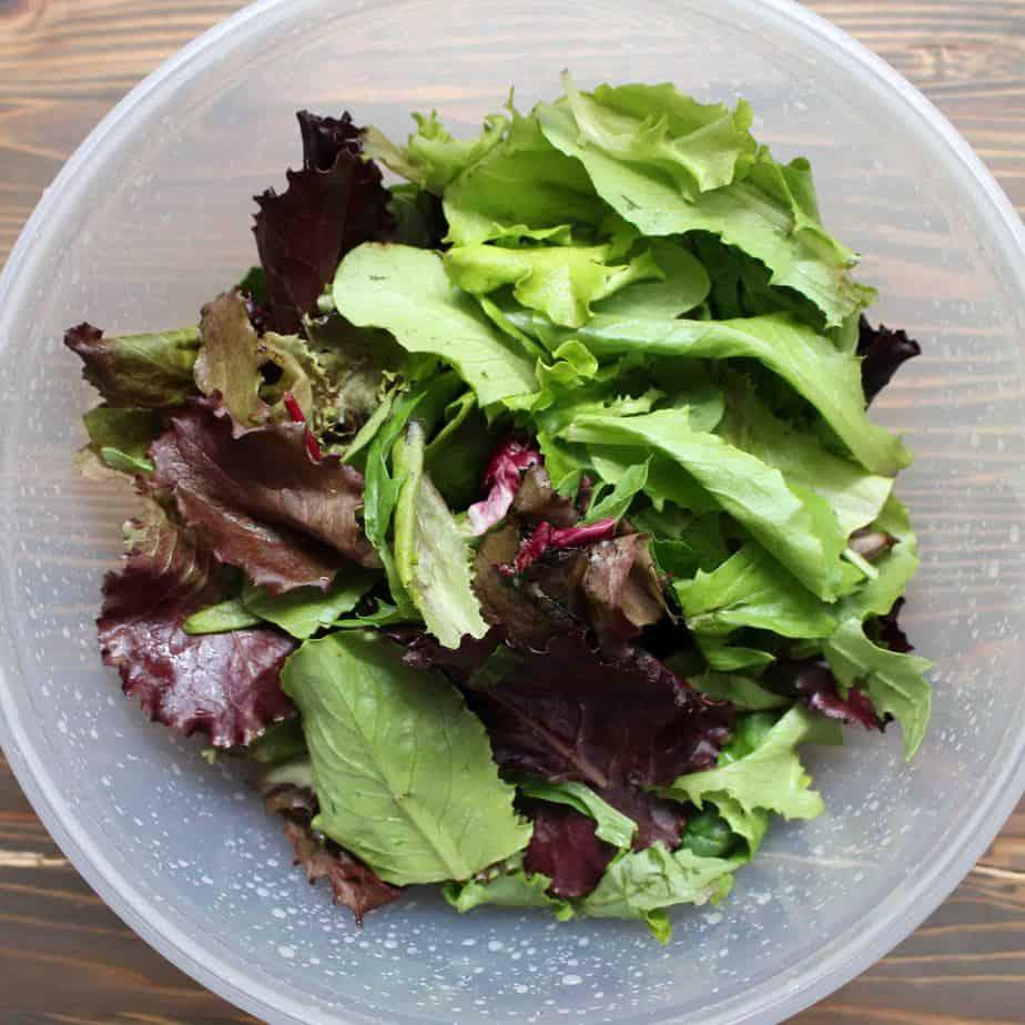 Fresh Salad Greens for Cucumber Sesame Salad | Frugal Nutrition