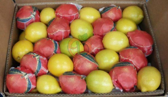Fresh yellow lemons | Fruit Link