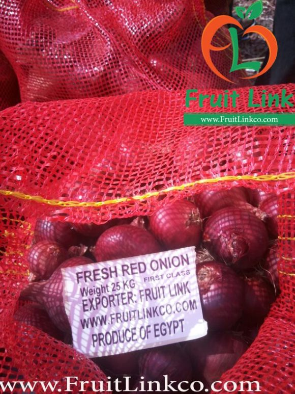 Egyptian Red Onion | Fruit Link