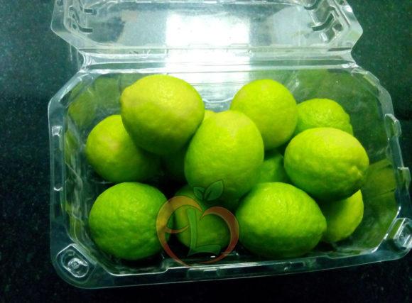 Egyptian Lime | Fruit Link
