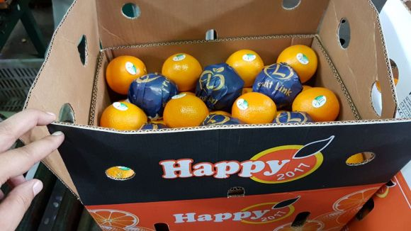 Valencia Oranges | Fruit Link