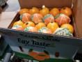 Sukkari-Orange-Fruits