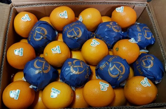Valencia Oranges | citrus season 2017 | Fruit Link