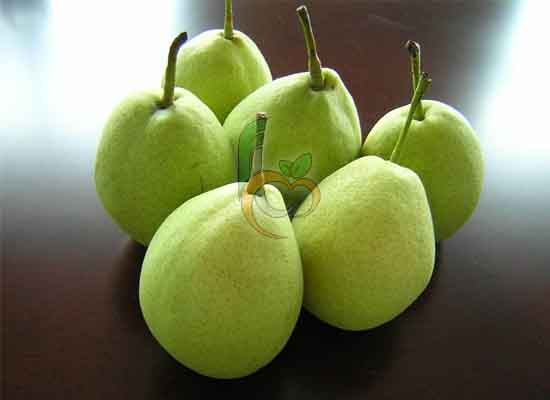 Green Yellow Pear by Fruit Link