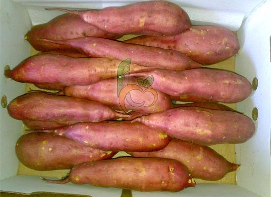 Fresh Produce Potatoes