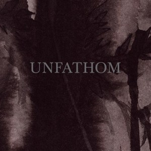 Unfathom - Ronald Zieger