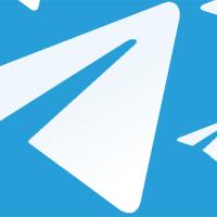 Unisciti anche tu al canale Telegram della FSSI