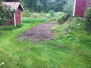 Här planerade jag att ha en liten köksträdgård en gång i tiden. Men nu har jag lämnat marken åt sitt öde.