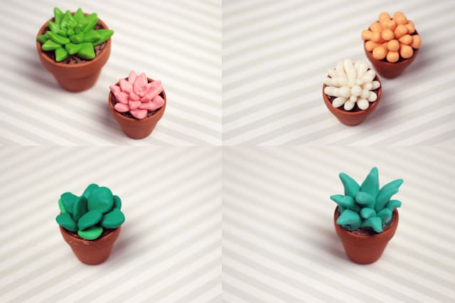 succulents-polymer