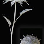 3D Flowers Printing 15